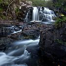 Inchree Falls by Roddy Atkinson