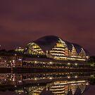 Sage Gateshead by Timeless Prints