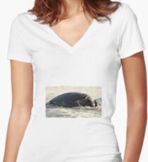Turtle Resting - Heron Island, Australia Women's Fitted V-Neck T-Shirt