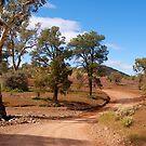 Brachina Gorge, Wilpena, South Australia. (Study #2) by johnrf