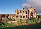 Melrose Abbey , the Borders, Scotland by David Rankin
