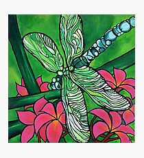 Dragonfly In Pink Photographic Print