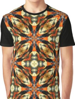 Colorful Gourds Abstract Design Graphic T-Shirt