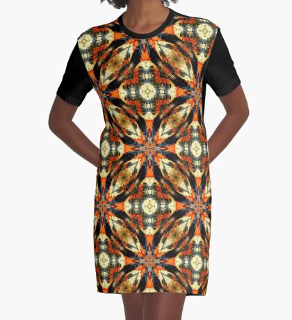 Colorful Gourds Abstract Design Graphic T-Shirt Dress