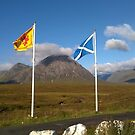 Scottish flags - Saltire and St Andrews cross by David Rankin