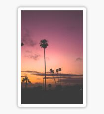 Sunsets Sticker