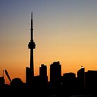 Toronto a Place to be.... at least once in your life. by Larry Llewellyn