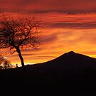 Bennachie sunset by Fiona MacNab