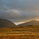 Evening light on Hoy and Graemsay by Fiona MacNab