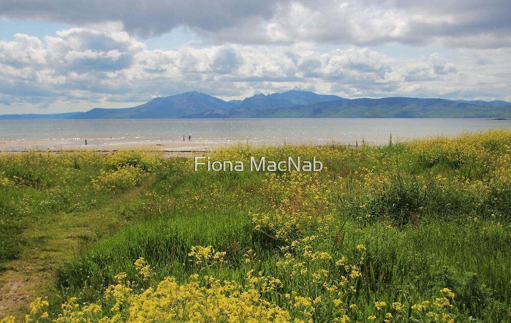Arran from Scalpsie Bay, Bute by Fiona MacNab