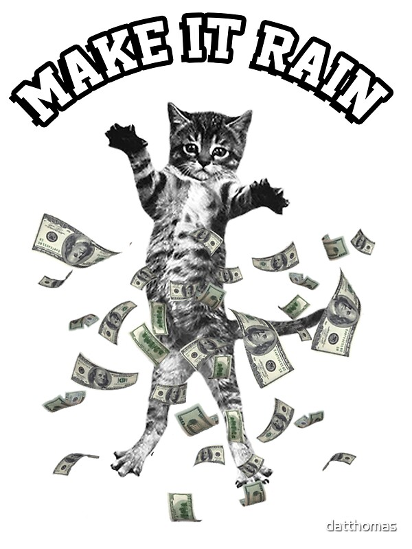 Dollar bills kitten make it rain money cat quot stickers by datthomas