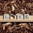 LOVE by Heather Crough