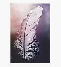 Feather in Pastel Tones Photographic Print