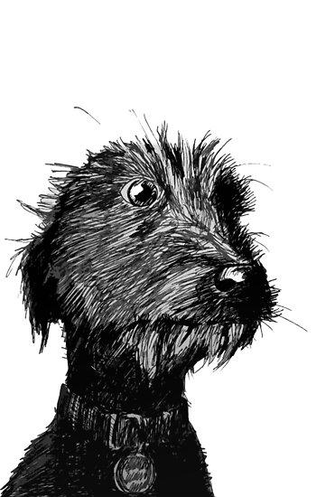 Dog by iszi