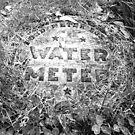 Water Meter by zepfhyr