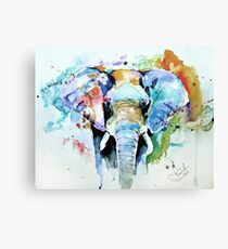Splash of colour Canvas Print