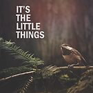 The Little Things by Christopher Burton