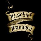 Mischief Managed Banner by Serdd