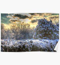 Snowy Ravine  Poster