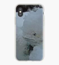 SNOW BOUND LITTLE FROG  iPhone Case