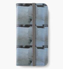 SNOW BOUND LITTLE FROG  iPhone Wallet/Case/Skin