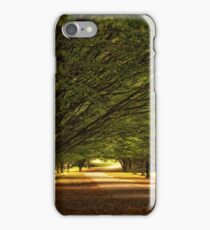 Under the tree`s iPhone Case/Skin