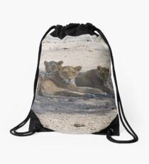Four Lionesses Shading Themselves Drawstring Bag
