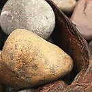 Pebbles and Rust by Livvy Young