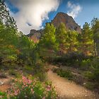 Pink flowers, trees and mountains by Ralph Goldsmith