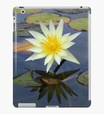 Garden Reflections  iPad Case/Skin