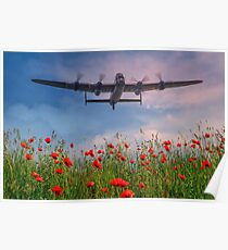 Lancaster Fly Over Poster