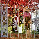 Fall Scarecrow  by K D Graves Photography
