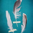 3 Feathers on Teal by Bethany Helzer