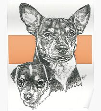 Rat Terrier, Father & Son Poster