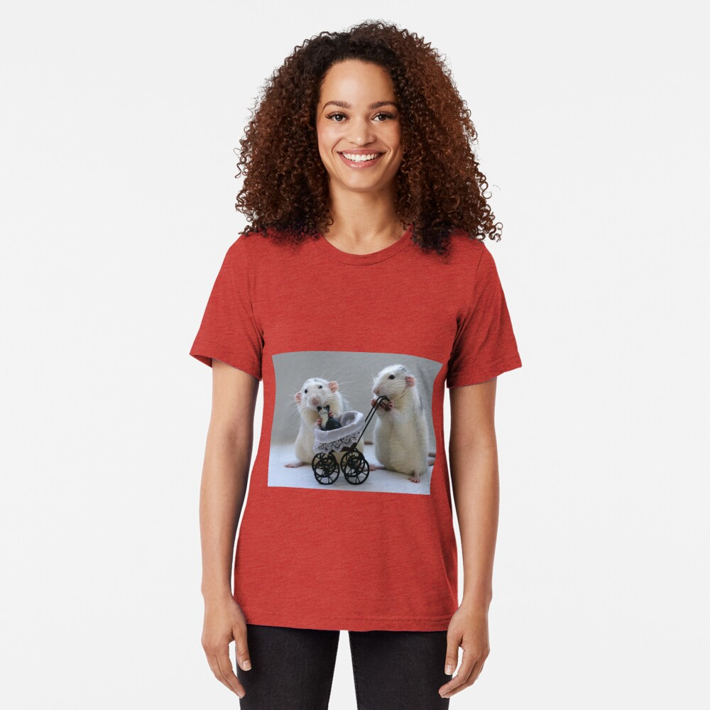 A nice day out! Tri-blend T-Shirt