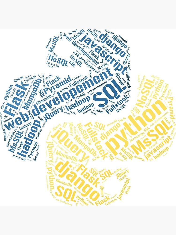 Camiseta y sudadera con capucha de Python Programmer de nasa8x