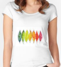 Colorful watercolor painting of autumn leaves Women's Fitted Scoop T-Shirt
