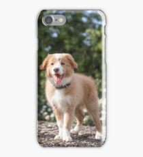 Bailey...Blonde Border Collie... iPhone Case/Skin