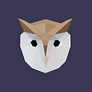 Low Poly Owl by McBethAllen
