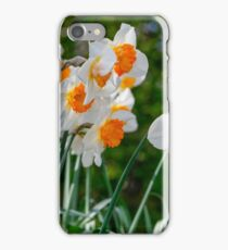 Spring Daffodil Flowers iPhone Case/Skin