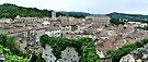 Overlooking Viviers, France by Trish Meyer