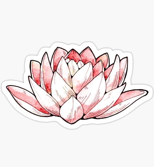 Lotus Flower by Cristina Cerulli