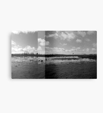 Wetlands - Dangars Lagoon, Northern Tablelands, NSW, Australia Canvas Print