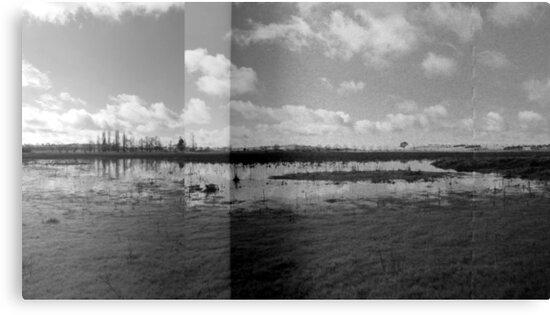 Wetlands - Dangars Lagoon, Northern Tablelands, NSW, Australia by Kitsmumma