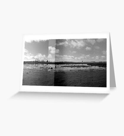 Wetlands - Dangars Lagoon, Northern Tablelands, NSW, Australia Greeting Card