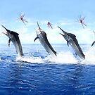 5 Jump Marlin Merge by blackmarlinblog