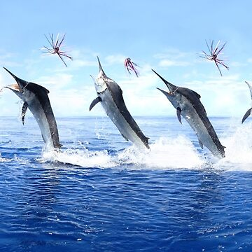 5 Jump Marlin Merge by blackmarlinblog