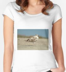 Brown Seagull On The Beach Women's Fitted Scoop T-Shirt