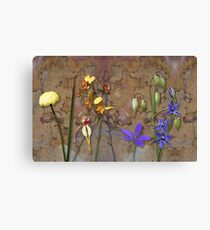 Orchids and Wildflowers on old rusty Pink n Caramel Metal Canvas Print