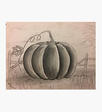 Pumpkin Photographic Print